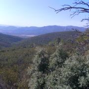 Finca Montes de Toledo Entorno