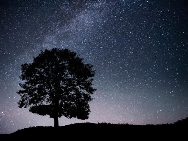 Turismo de Estrellas en los Montes de Toledo