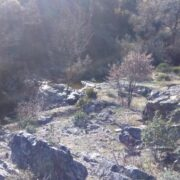 Ruta Hoz de Carboneros Montes de Toledo