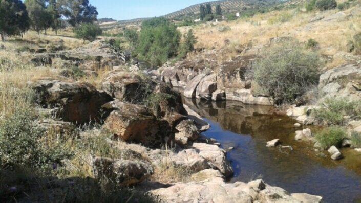 Ruta Santa Ana de Pusa Montes de Toledo