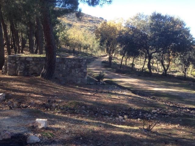 Ruta de Senderismo La Galinda-Las Nacientes