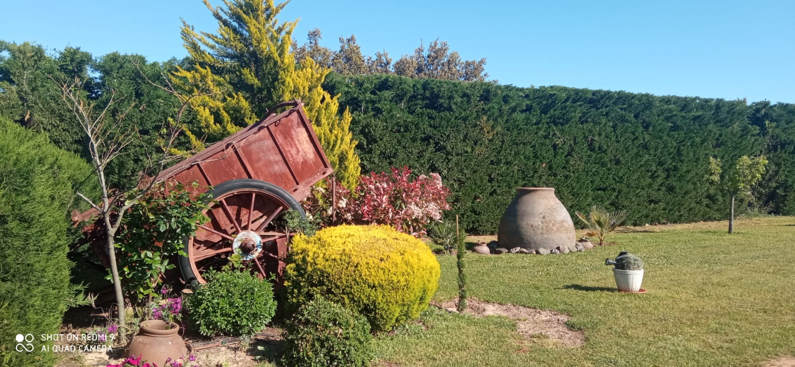 Casa Rural Finca los Pájaros - Casa Rural en los Montes de Toledo
